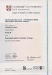 Zertifikat Englisch